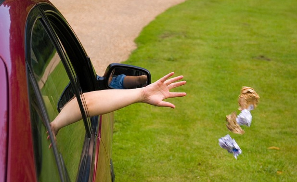 За свинство автовладельцам грозит новый штраф